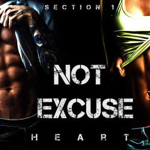 Not Excuse (Section 1)