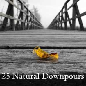 25 Natural Downpours