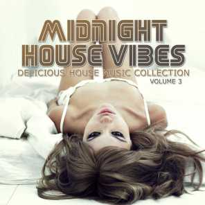 Midnight House Vibes, Vol. 3 (Delicious Music Collection)