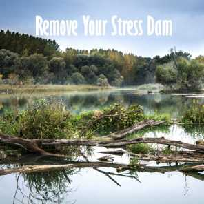 Remove Your Stress Dam