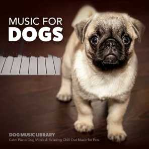 Music for Dogs: Calm Piano Music for Dogs & Relaxing Chill out Music for Pets