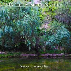 In the Arms of Nature 7: Xylophone and Rain