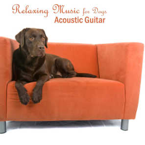 Relaxing Music for Dogs - Acoustic Guitar Songs