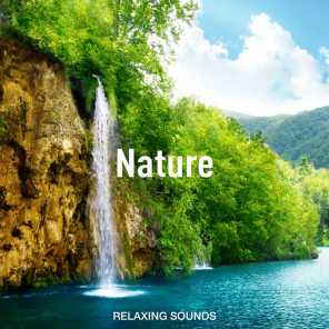 Nature Sounds for Sleeping