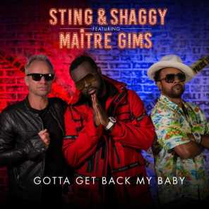 Gotta Get Back My Baby (feat. Maître Gims)
