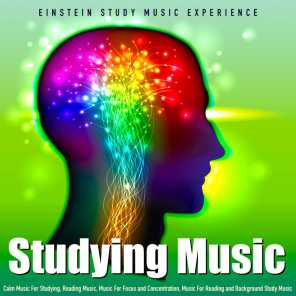 Studying Music: Calm Music for Studying, Reading Music, Music for Focus and Concentration, Music for Reading and Background Study Music