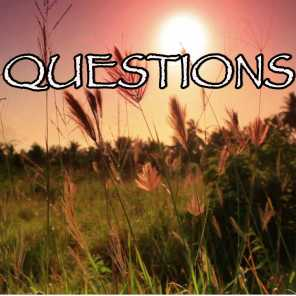 Questions - Tribute to Chris Brown