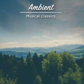 #1 Hour of Ambient Musical Classics for Zen Relaxation & Meditation