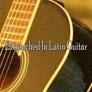 Entrenched In Latin Guitar