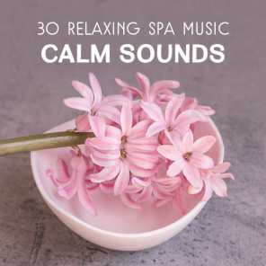 30 Relaxing Spa Music – Calm Sounds for Body & Mind Rest, Massage Sessions, Wellness, Pure Dreaming, Total Regeneration