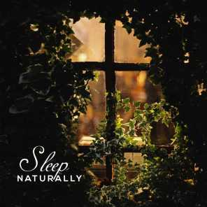 Sleep Naturally – 15 Sleepy Melodies to Bed for Deep and Healthy Sleep, Delicate and Subtle Music for Insomnia and Problems Falling Asleep, Light Rain on a Tin Roof, Calm Flute Sounds, Sea Waves