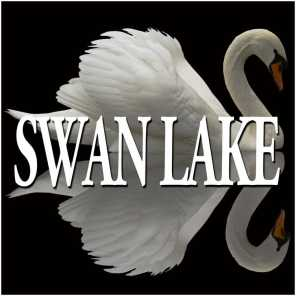 Tchaikovsky : Swan Lake & The Sleeping Beauty [Excerpts]