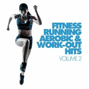 Fitness, Running, Aerobic & Work-Out Hits Vol. 2