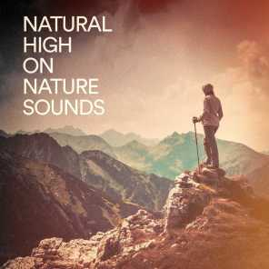 Natural High on Nature Sounds