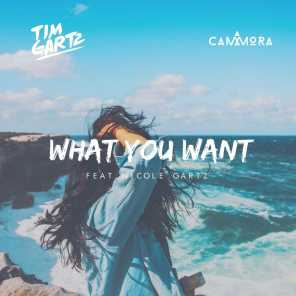 What You Want  (feat. Nicole Gartz)