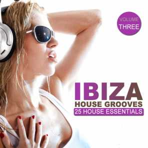 Ibiza House Grooves, Vol. 3