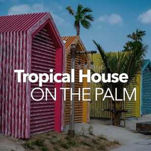 Tropical House on the Palm