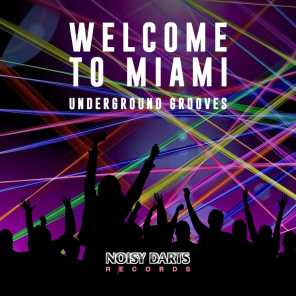 Welcome to Miami (Underground Grooves)