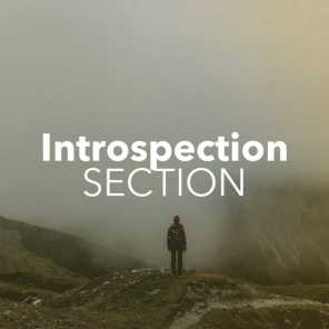 Introspection Section