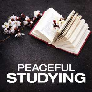 Peaceful Studying