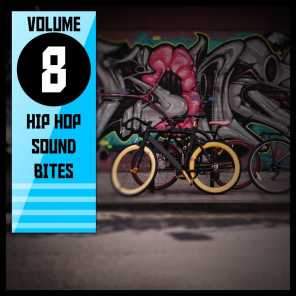 Hip Hop Sound Bites,Vol.8