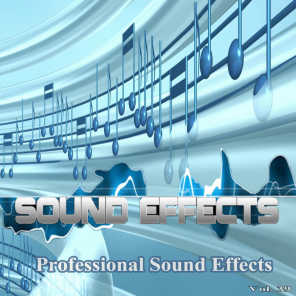 Professional Sound Effects, Vol. 39