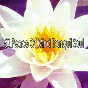 60 Peace of Mind Tranquil Soul