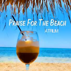 Praise for the Beach