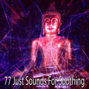 77 Just Sounds for Soothing
