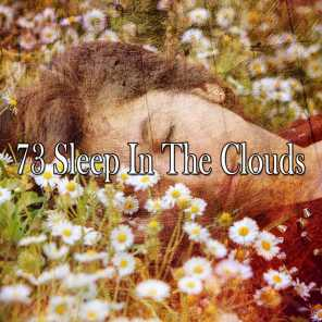 73 Sleep in the Clouds
