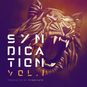 Sounds of Syndication, Vol .1 Presented by Syndicate