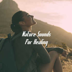 Nature Sounds for Healing