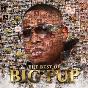The Best of Big Pup