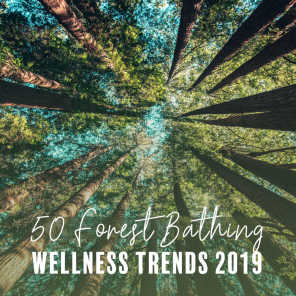 50 Forest Bathing