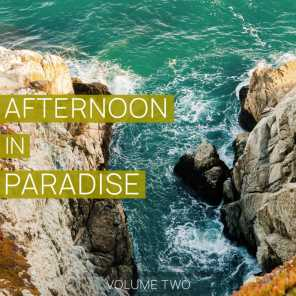 Afternoon in Paradise, Vol. 2