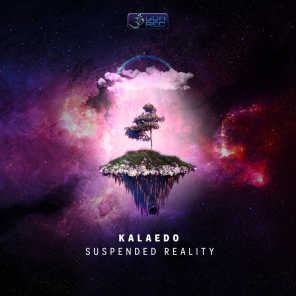 Suspended Reality