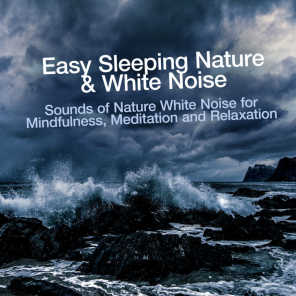 Easy Sleeping Nature & White Noise