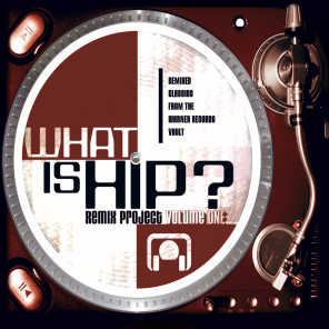What Is Hip-Remix Project Vol. 1
