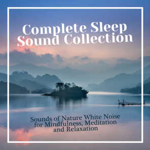 Complete Sleep Sound Collection